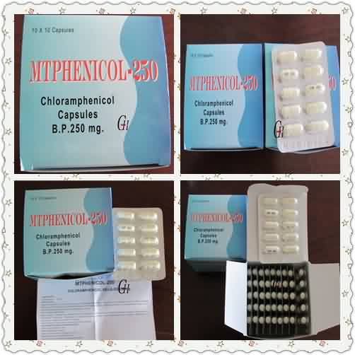 Antibiotics Chloramphenicol Capsules