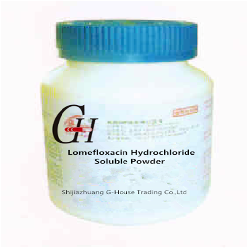Cheap price Injection Vials For Antibiotics -