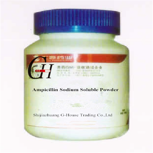 Ampicillin Sodium Soluble Powder