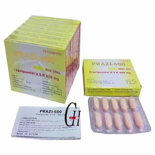 Praziquantel tablette USP 600 mg
