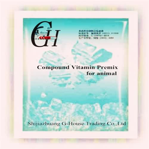 Wholesale Dealers of Capsule Pill Container -
